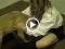 Học sinh cấp 3 đụ nhau với chó